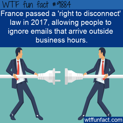 law fact France out of office