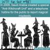 Anti-Witchcraft Unit
