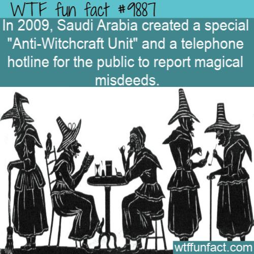 fun fact anti witchcraft unit