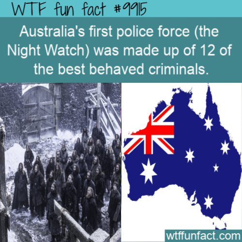 fun fact australias criminal police force