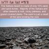 The Sahara desert rocks