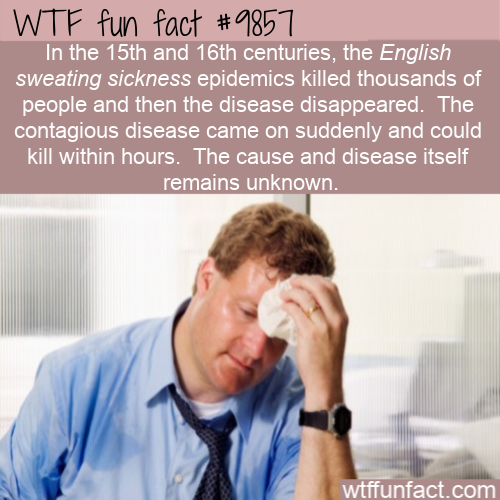 fun fact english sweating sickness