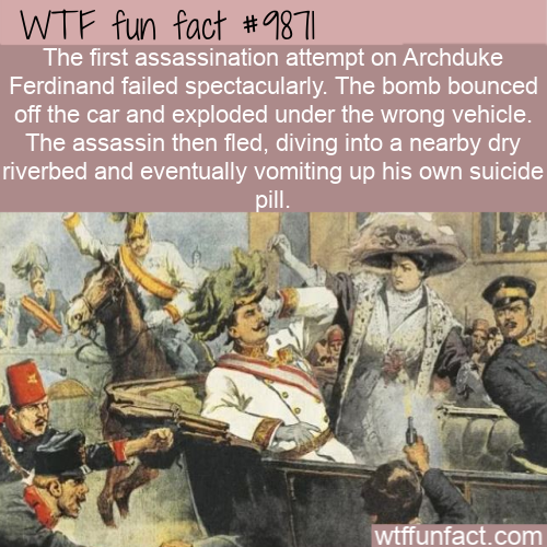 fun fact failed assassination ww1