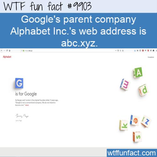 fun fact googles parent company alphabet domain name