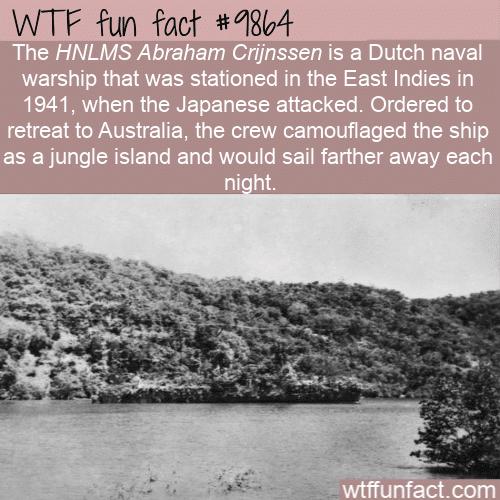 fun fact hidden warship in the jungle