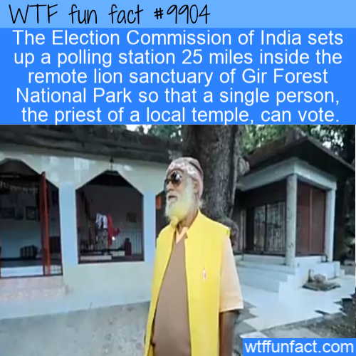 fun fact indian election polling station