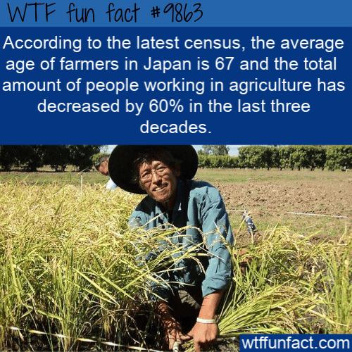 fun fact japan aging farmers