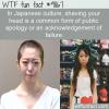 Japanese public apology