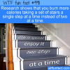 Fun Exercise Fact – Take Stairs One By One