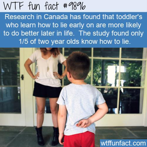 fun fact toddlers lie