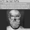 1000 ways to die wtf fun fact