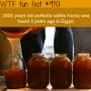 3000 year old edible honey wtf fun fact
