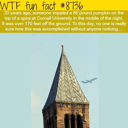 60-pound pumpkin impaled on top of a spire at Cornell - WTF fun facts
