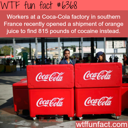 815 pound of cocaine found in Coca-cola factory in France - WTF fun facts