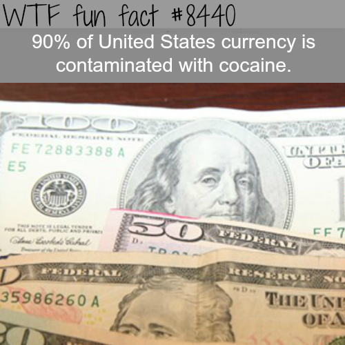 90% of the U.S. currency have cocaine contamination - WTF fun facts