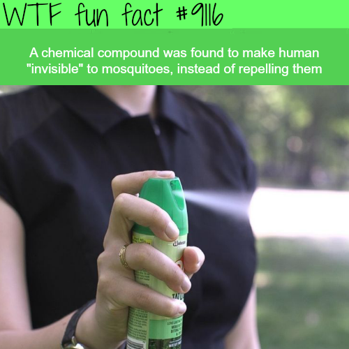 A chemical compound that will make you invisible to mosquitoes - WTF fun fact