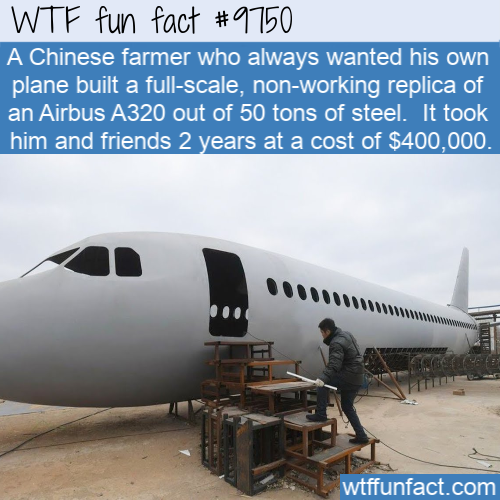 A Chinese farmer who always wanted his own plane built a full-scale