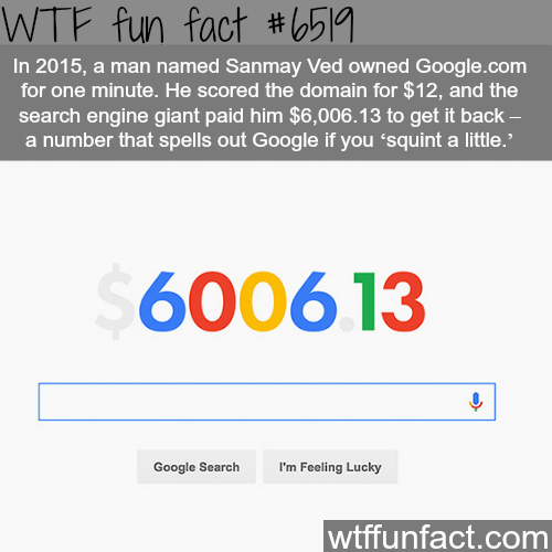 A man bought google.com domain for $12 - WTF fun facts