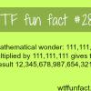 a mathematical wonder
