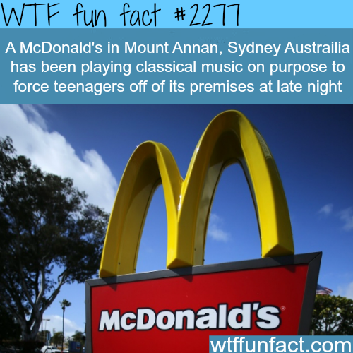 A McDonalds's in Mount Annan -WTF fun facts