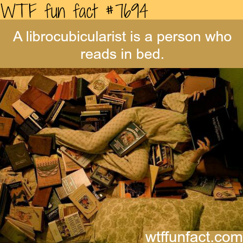 A person who reads in bed - WTF FUN FACTS