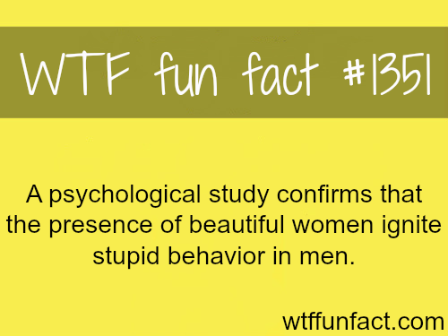 A psychological study confirms that the presence of beautiful women ignite stupid behavior in men.