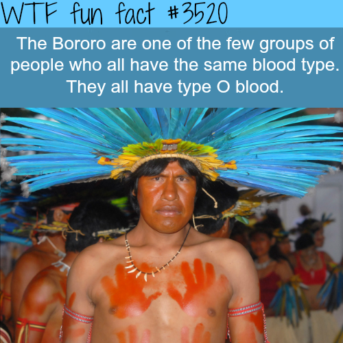 A whole tribe that has the same blood type - WTF fun facts