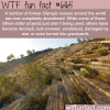 abandoned olympic stadiums wtf fun facts