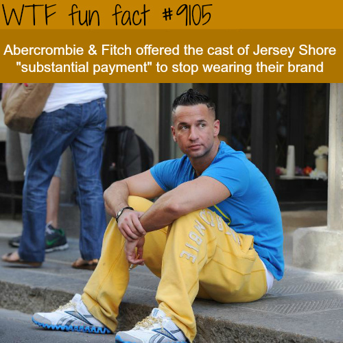 Abercrombie and Fitch paid Jersey Shore to not wear their clothes - WTF fun fact
