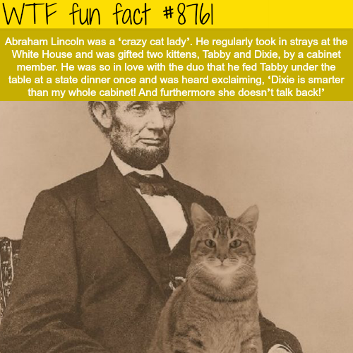 Abraham Lincoln's cats - WTF fun facts