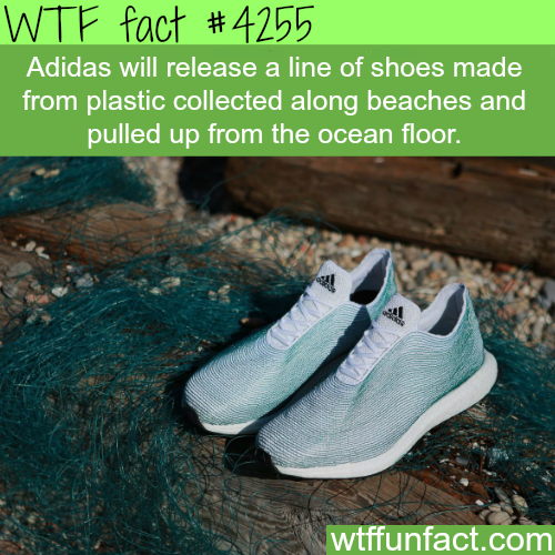 Adidas shoes made from plastic collected from the ocean floor -  WTF fun facts