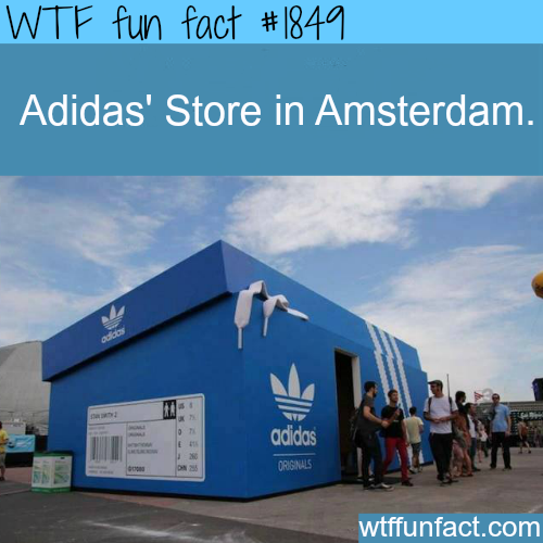Adidas Store in Amsterdam - WTF fun facts
