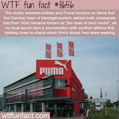 Adidas vs Puma - WTF fun facts