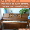 adopt a piano piano adoption
