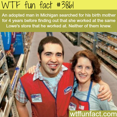 Adopted man finds his real mother working in the same place as him - WTF fun facts