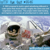 advertising in space wtf fun facts