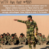 afghan minister of defense chooses the wrong