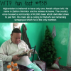 afghanistans last jew wtf fun fact