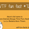 akon full name