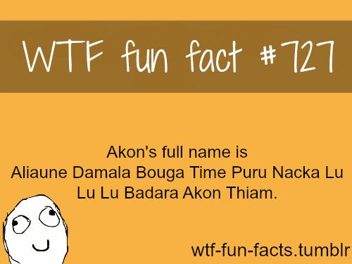 akon's full name