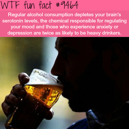 Alcohol consumption and how it affects your mood  - WTF fun fact