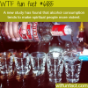 alcohol consumption wtf fun facts