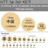 almost all of china share the same 100 last names