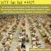 amazon warehouse in pennsylvania wtf fun facts