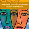ambivert wtf fun facts