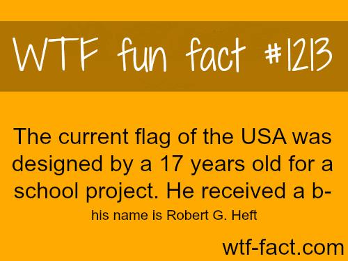 American flag History - Robert G. Heft