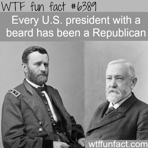 American presidents with beards - WTF fun facts