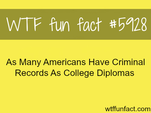 American's criminal records - WTF fun facts