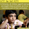 amrmenia and chess at schools
