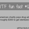 an american charity pays for drugs